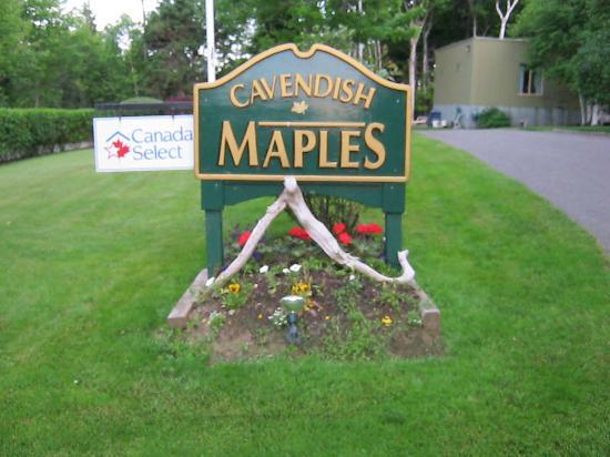 Cavendish Maples Cottages: entrance