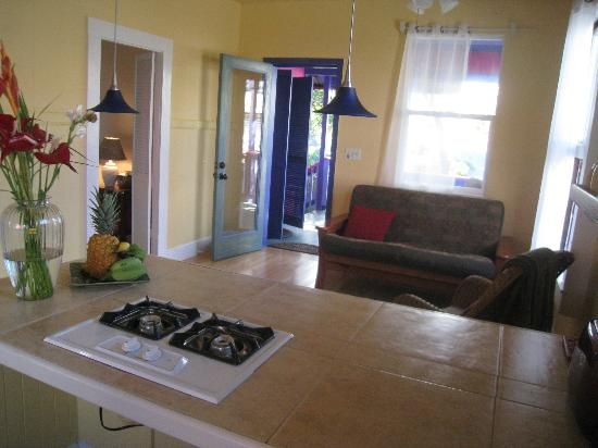 The Lotus Garden Hilo: open plan living area in The Lotus vacation rental