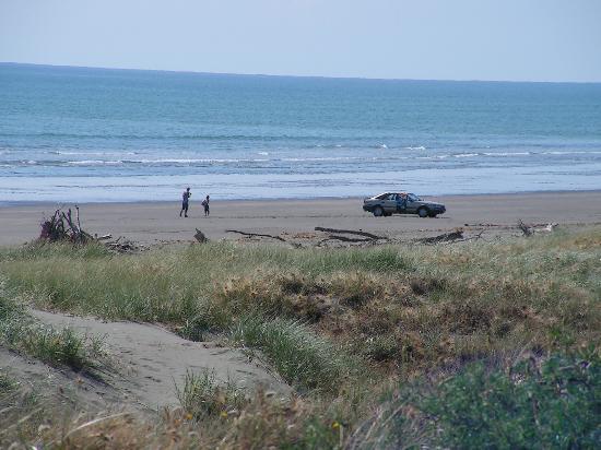 Windy Waves Bed and Breakfast: Waitarere Beach