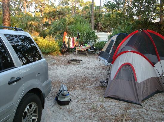 St. Joseph Peninsula State Park: Shady Pines site 77