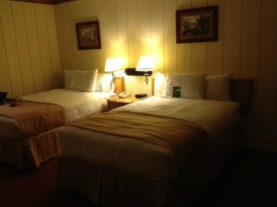 Salt Fork Lodge and Conference Center: double beds