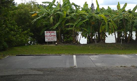 Red Roof Inn Ellenton: Beware of Alligators.. (Sign)