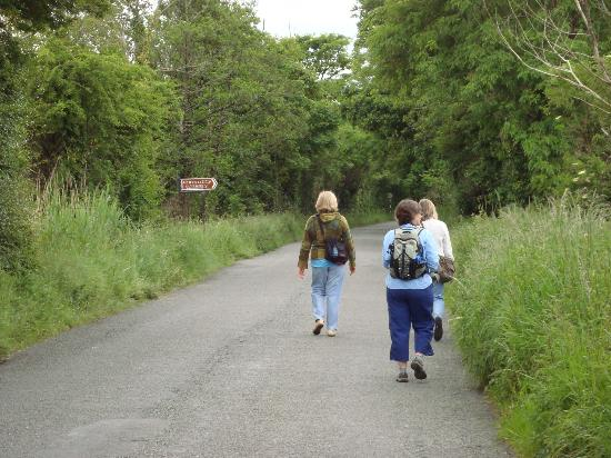 The walk down the road to Bunratty Castle from the Ashgrove House