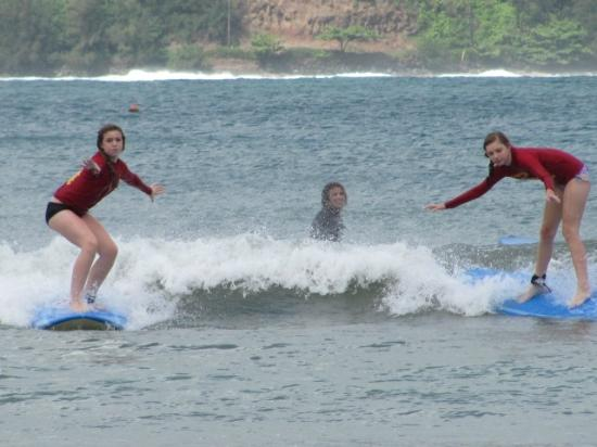 Hawaiian Surfing Adventures: They're up!