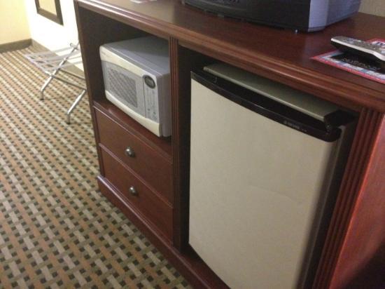Ramada Rochelle Park Near Paramus: Microwave & Refridgerator very handy!