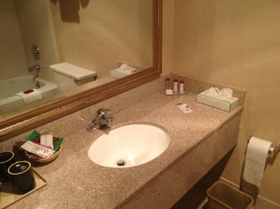 Ramada Rochelle Park Near Paramus : Hand washing area is pretty clean.