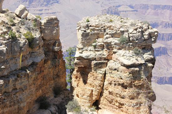Touch the Southwest: Grand Canyon South Rim