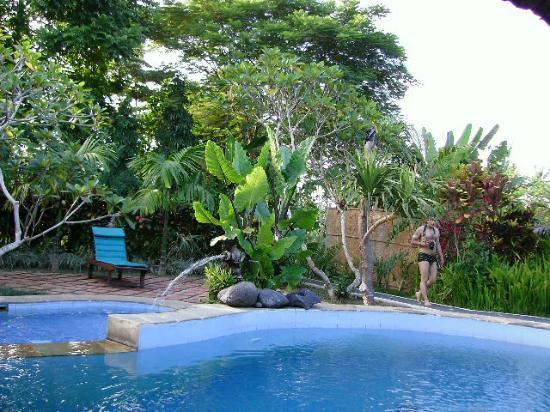 Puri Asri Petulu: Pool