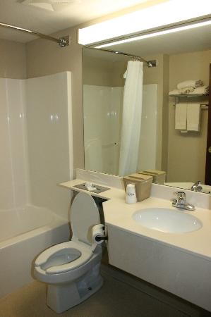 Microtel Inn & Suites by Wyndham Starkville: bathroom