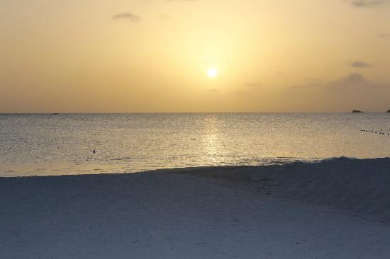 Starfish Jolly Beach Resort: Near sunset