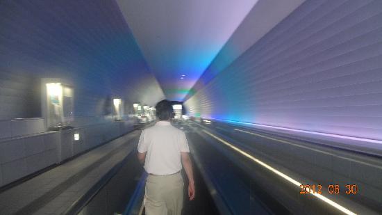 九州国立博物館, トンネル通路(動く歩道)