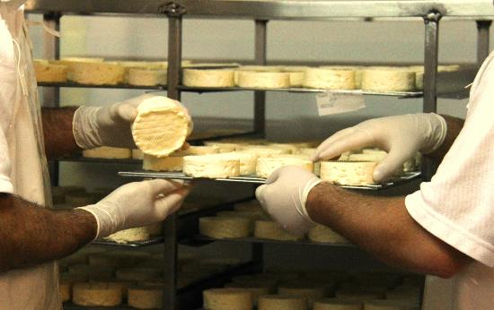 Hunter Valley Cheese Factory & Tasting Rooms: viewing windows to watch the cheesemaking process