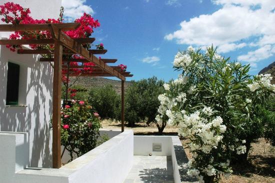 Exterior garden details (43388571)