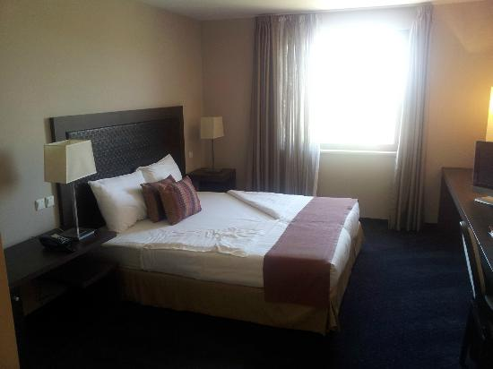 Metropolitan Hotel Sofia : Room