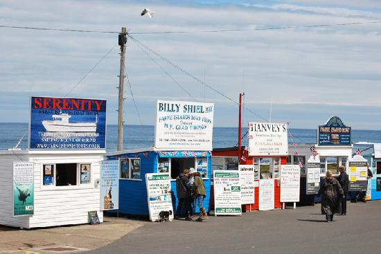 Serenity booking kiosk, Seahouses harbour