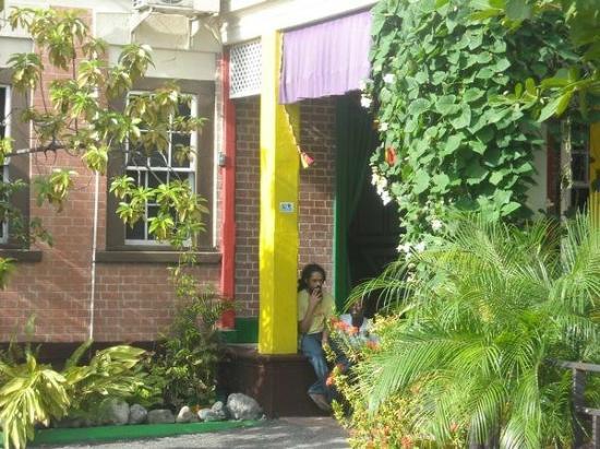 "Bob Marley Museum : Damian ""JR. GONG"" Marley"