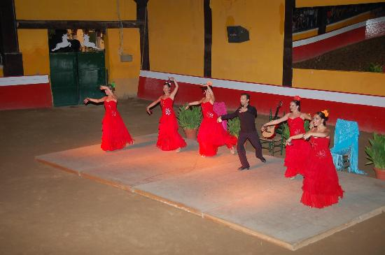 Diverti Park : Flamenco - Show