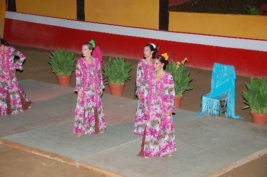 Diverti Park: Flamenco - Show