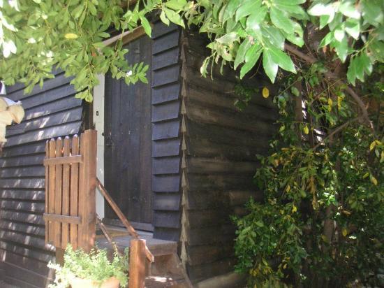 Le Machou : tree house