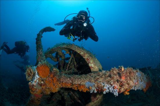 Divewise Malta