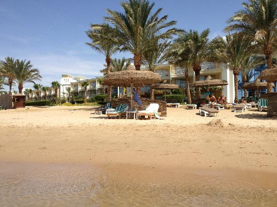 Sentido Palm Royale Soma Bay: Veduta Spiaggia