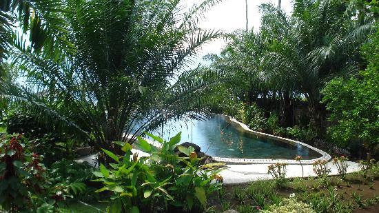Lumbalumba Diving: Het zwembad