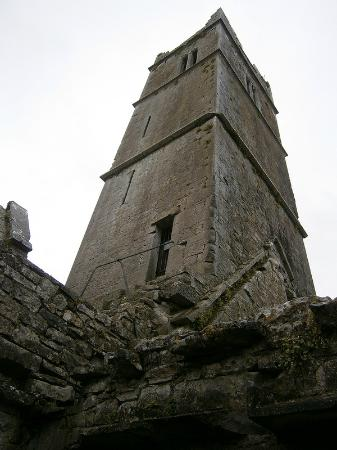 Quin Abbey: Internal view of Quin Friary Tower