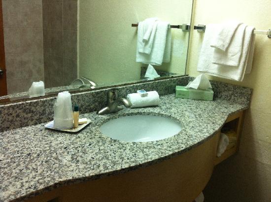 Camelot Motel: Granite countertop in bathroom