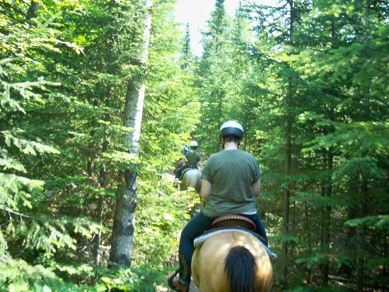 Sawtooth Mountain Stables: On the trail