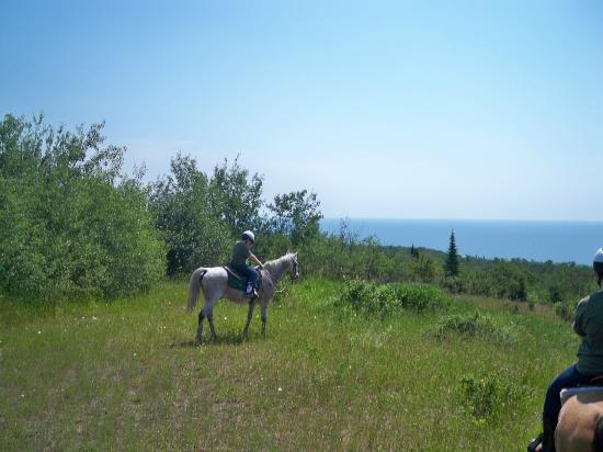 Sawtooth Mountain Stables: In the grassland over looking Lake Superior