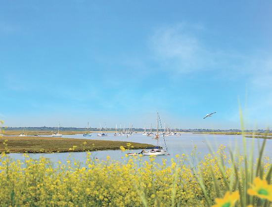Naze Marine Holiday Park - Park Resorts