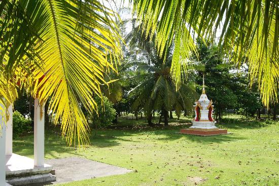 سووان بالم ريزورت: territory, Suwan Palm
