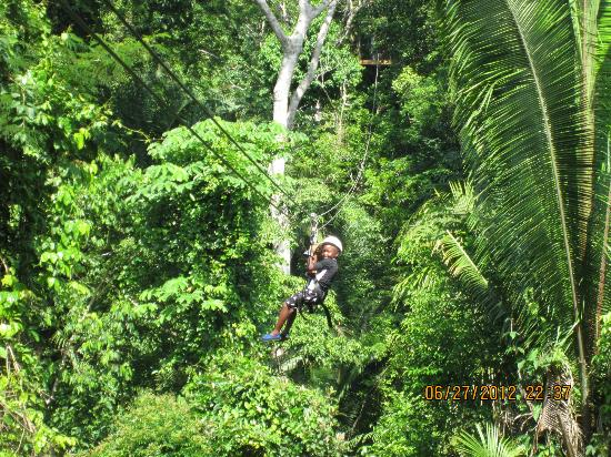 Belize Zip Line Canopy Tours: More ziplining