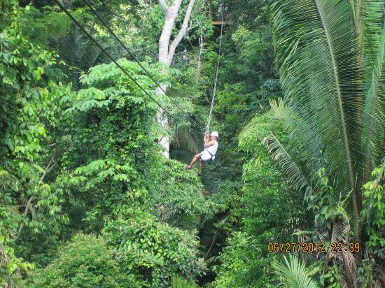 Belize Zip Line Canopy Tours: And more...