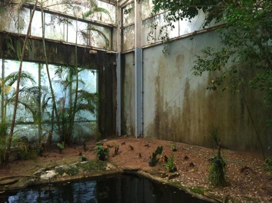 A World Of Orchids Kissimmee 2018 All You Need To Know Before Go With Photos Tripadvisor