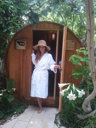 Pina Balev: The dry sauna in the back garden