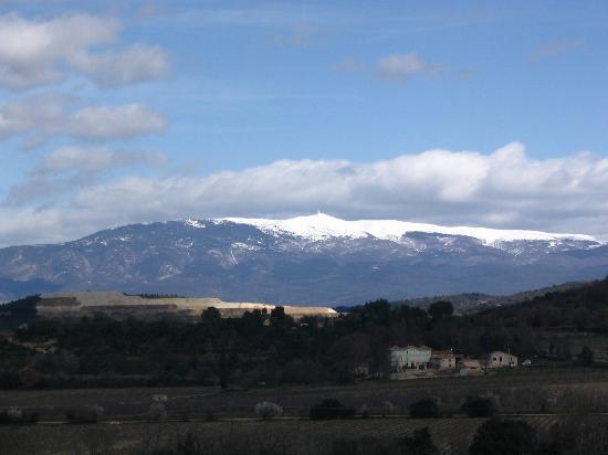 Le mas de la Cigaliere - Les Basses Garrigues : Vue sur le Géant du Vaucluse Le Mont-Ventoux