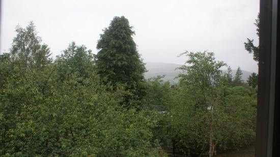 Hilton Grand Vacations Club at Craigendarroch Lodges: View from 53, there are mountains beyond the trees on a clear day!!