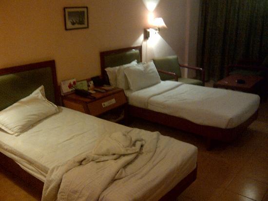 Hotel Harsha: Room