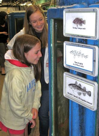 Woods Hole Science Aquarium: Sierra and Alexa!