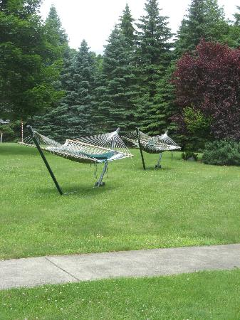 Deerfield Health Retreat and Spa: Hammocks Near the Pool