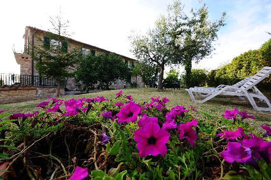 Agriturismo Colle degli Olivi: il giardino