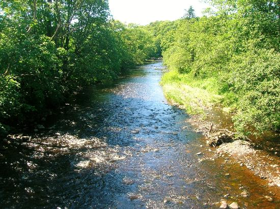 Catrine House: The River Ayr at Haugholm