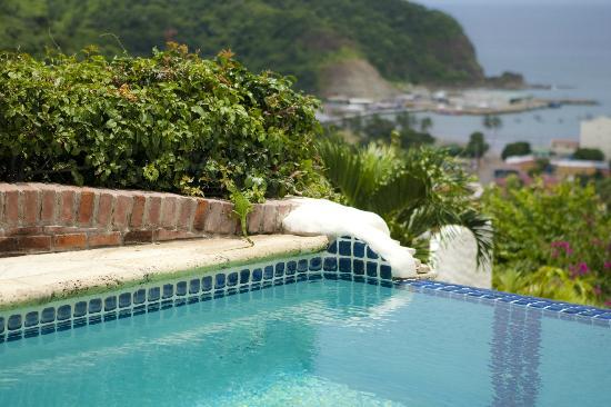 Pelican Eyes Resort & Spa: La Canoa Poolside