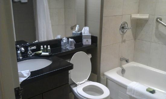 Best Western Plus Ottawa Downtown Suites: Salle de bain