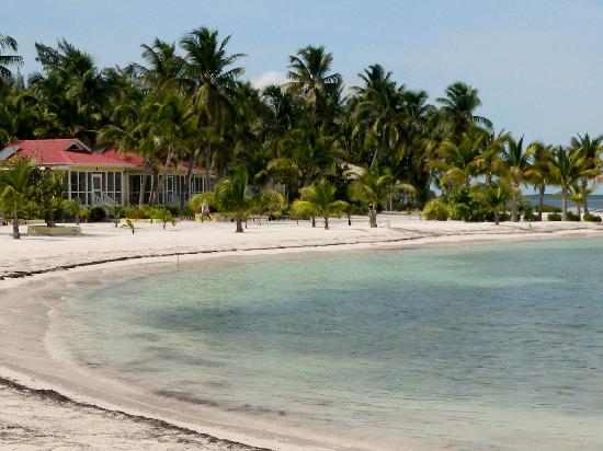 the beach at Turneffe Island Resort