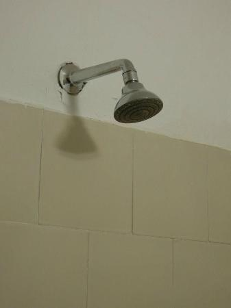 Aviv Spring Hostel: Shower