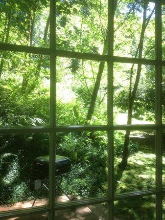Bridal Veil Lodge: our cottage view