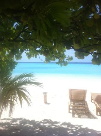 Maafushivaru: Blick vom Strand