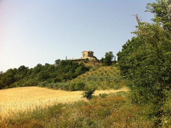 Tenuta Monte Volparo: view of the property
